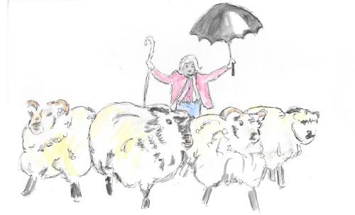 Baba Black Sheep
