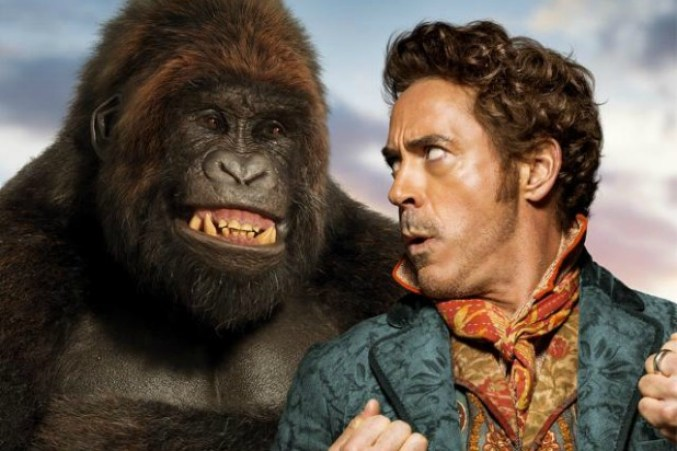 Gorilla and Downey