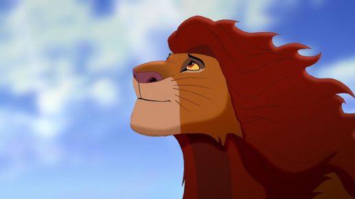 Simba gazing into the sky.