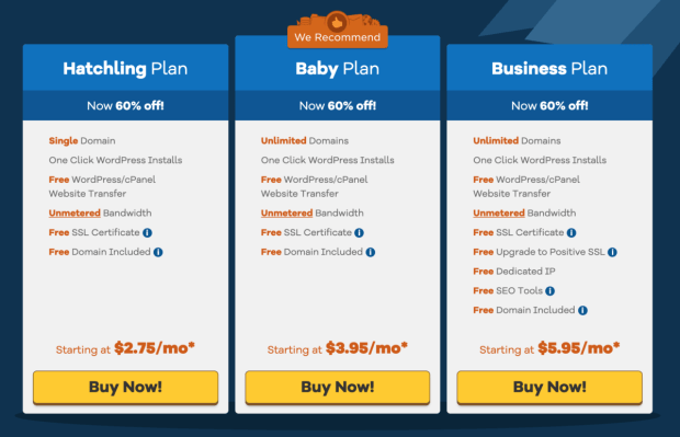 Purchasing Hosting For Your Blog - Select Your Hosting Plan