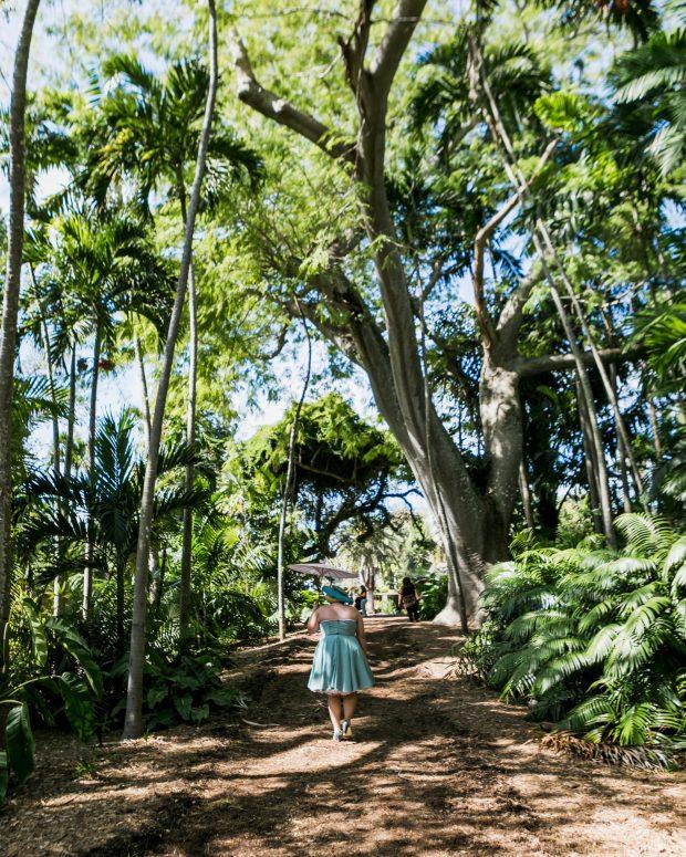 South Florida Blogger Awards at Fairchild Tropical Botanic Garden