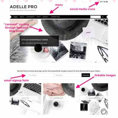 Adelle theme for WordPress from BluChic.com
