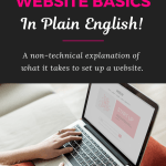 Website Basics (In Plain English)