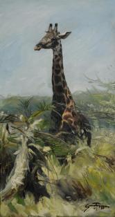 Giraff, oil on canvas 45x85cm - Gunnar Tryggmo