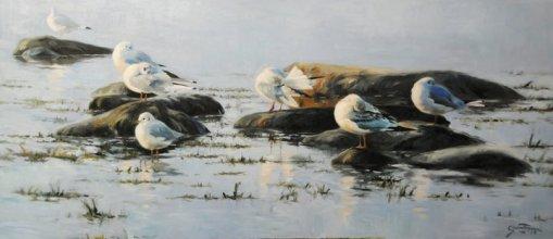 Morning Light - Gunnar Tryggmo