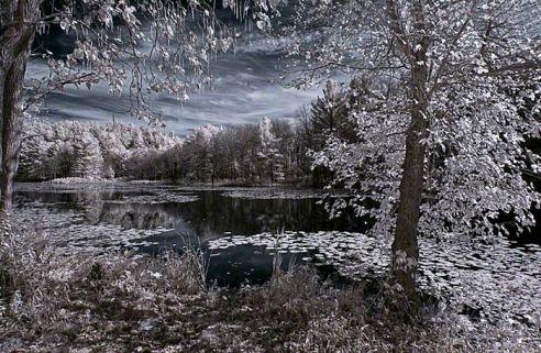 Fairyland – Infrared, Beaver pond, Plymouth, Connecticut ©2014 Robert Marsala