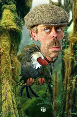 ∫ Hugh Laurie © Rodney Pike.