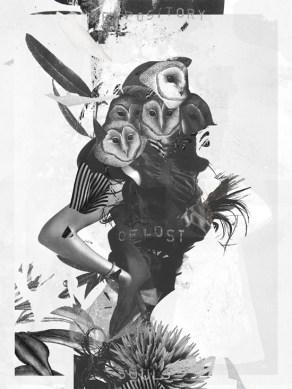 Raphael Vicenzi Collage R2 -2015