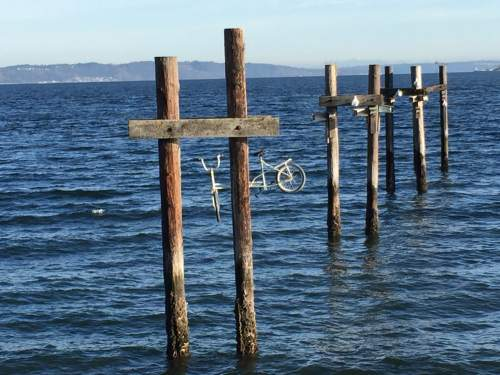 I heartily approve of Tacoma's Commencement Bay policy banning bicycling at low tide.