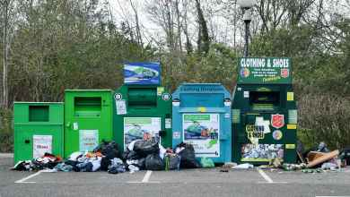Photo of How Does Waste Management Affect the Economy?