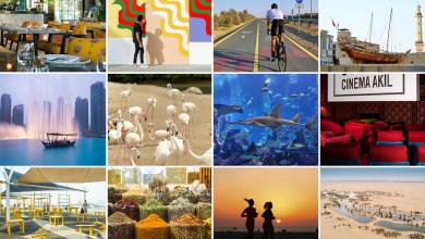 Photo of Some Things to Do in Dubai (2020)- Places to visit Dubai