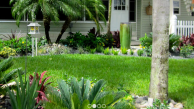 Photo of Hire a Qualified Landscaping Contractor