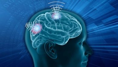 Photo of Wireless Brain Sensors Market: Current Analysis and Forecast (2020-2026)