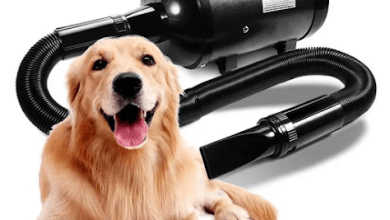 Photo of What Are the Best Pet Grooming Dryer Options?