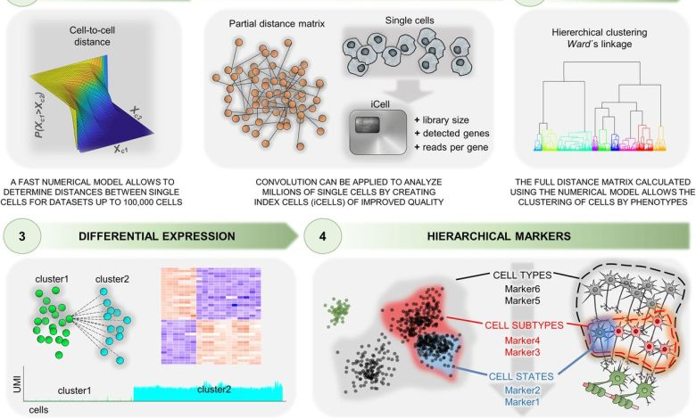 Single Cell RNA Sequencing