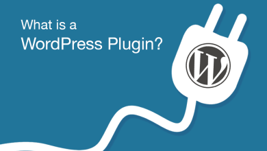 Photo of What Is a WordPress Plugin: A Comprehensive Guide for Beginners