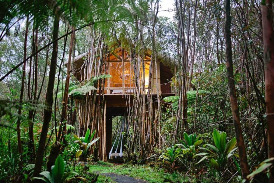 Dreamy Tropical Treehouse Hawaii Airbnb