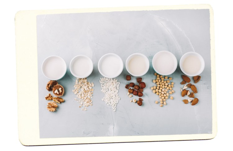 plant based milk alternatives