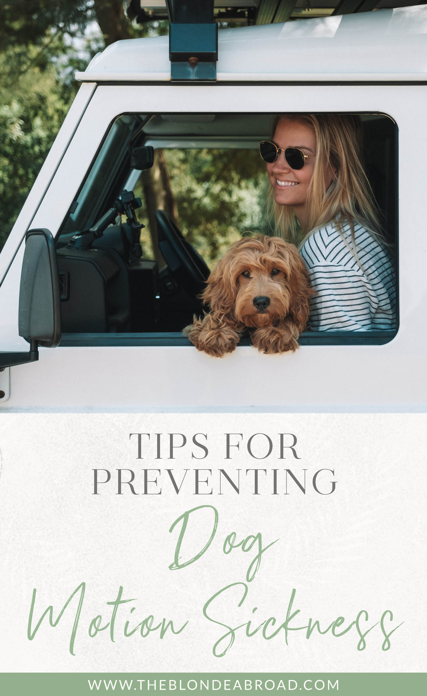 Tips for Preventing Dog Motion Sickness