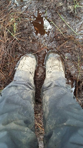 Boots getting muddy.