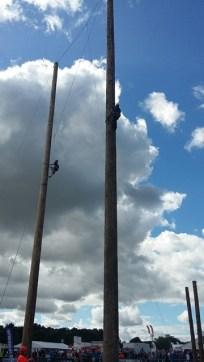 Trre climbing.