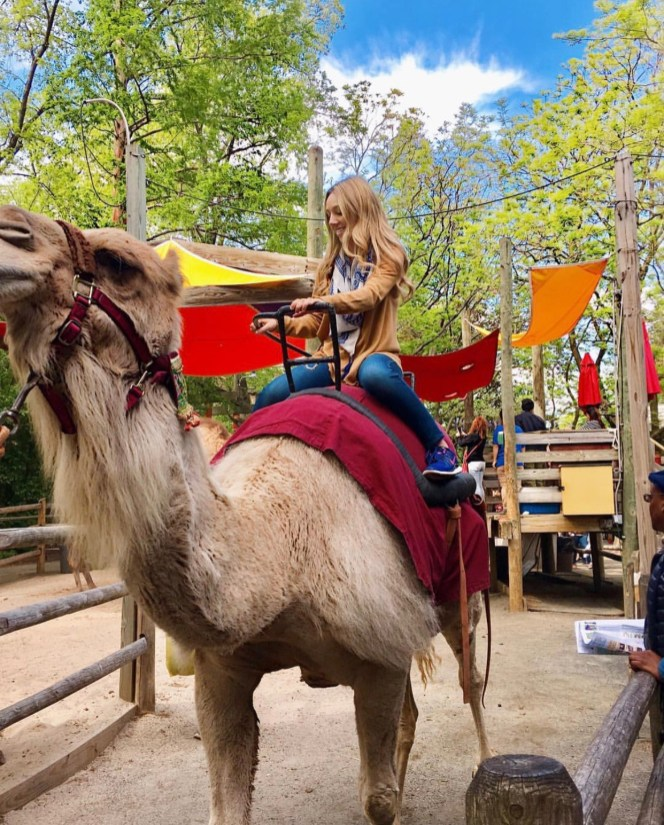 Riding my first Camel, named Rose.