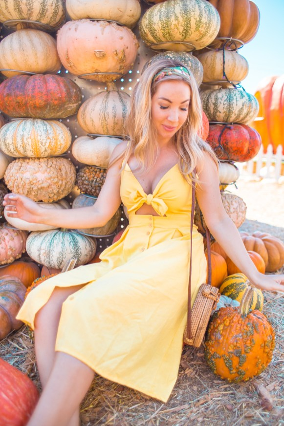 TheBlondesEyeView_wish_Pumpkin-2
