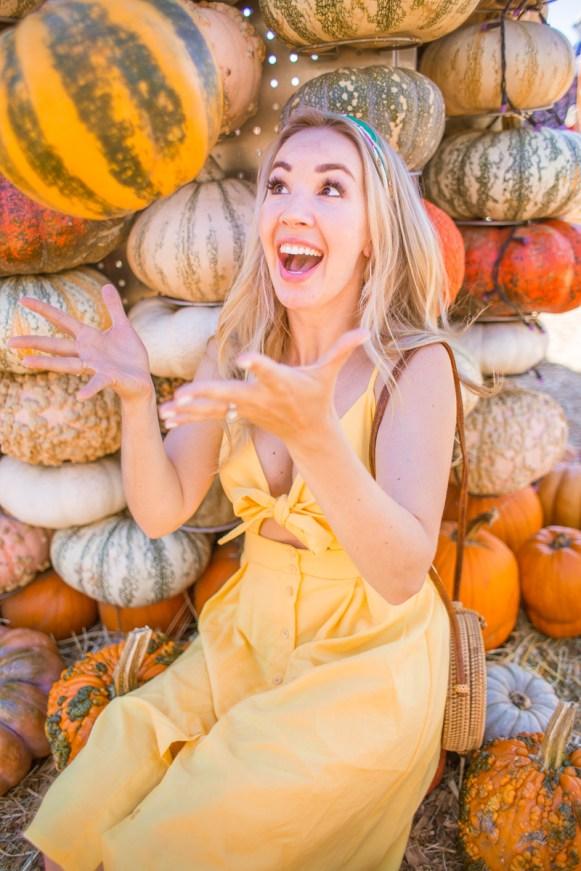 TheBlondesEyeView_wish_Pumpkin-5
