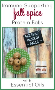 Immune Supporting Protein Balls   The Blooming Carrot