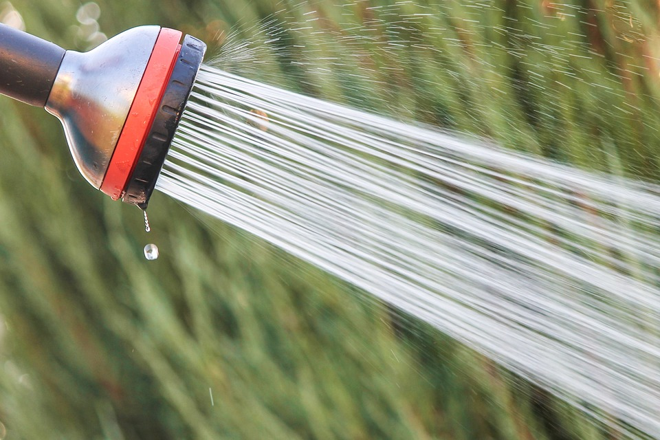 Water spraying from a hose with a spray attachment