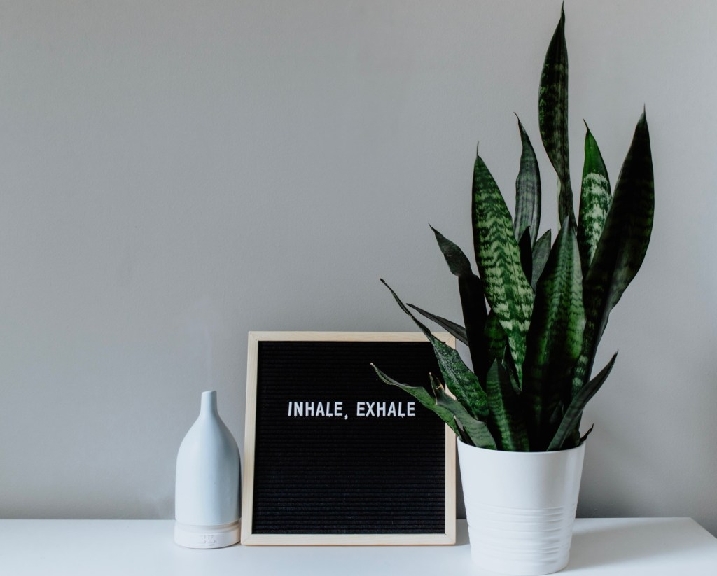 """from left to right, a diffuser, board with the words """"inhale, exhale"""" and a snake plant on a white counter."""