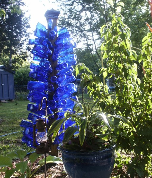 Picture of cobalt blue bottle tree with sun shining through the glass, next to shrubbery in a back yard garden.