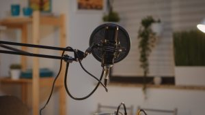 Professional broadcasting microphone