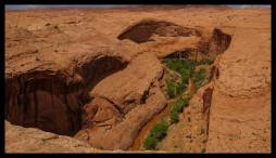 View into Coyote Gulch from Forty Mile Ridge Trailhead, Grand Staircase Escalante National Monument