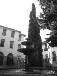 Koi Pond and Academic Block