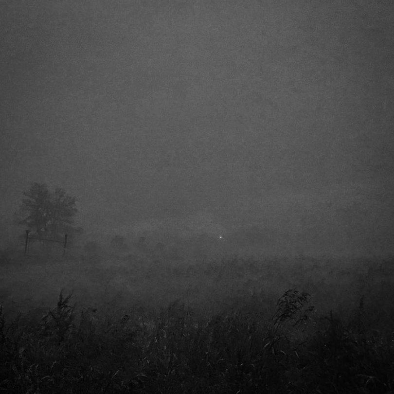 Philosopher's Stone-Quest-Dark Forest