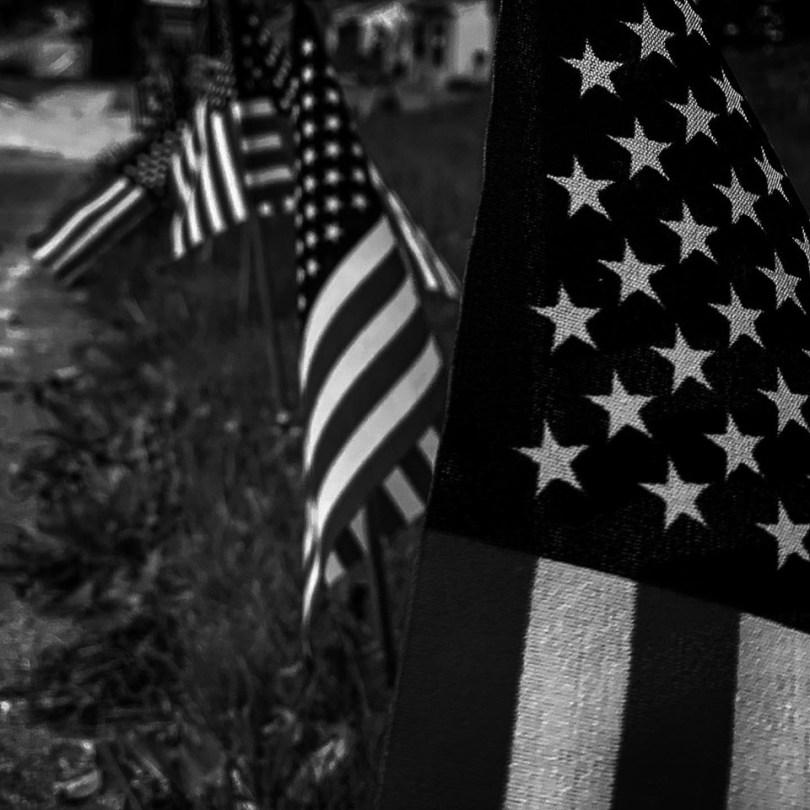 Trumpers-Think-Political-Polls-Lie-Bob Davis Podcast 862