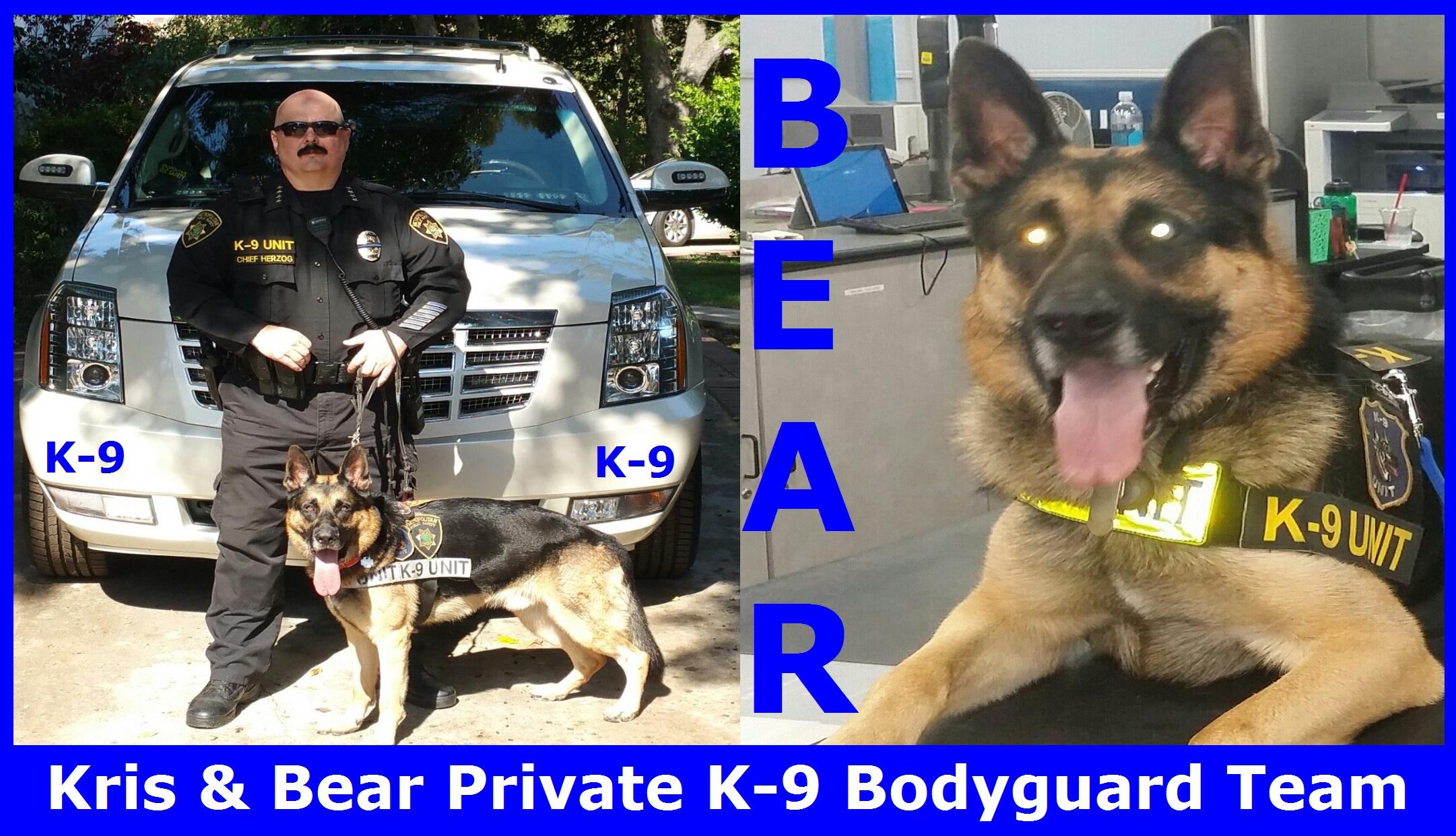 Elite Bodyguard Services