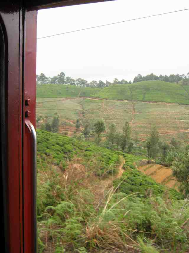 Train to Ella Sri Lanka