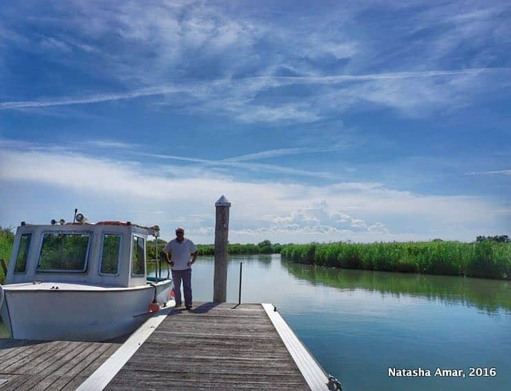Po Delta Adventures Nature & Wildlife in Emilia Romagna