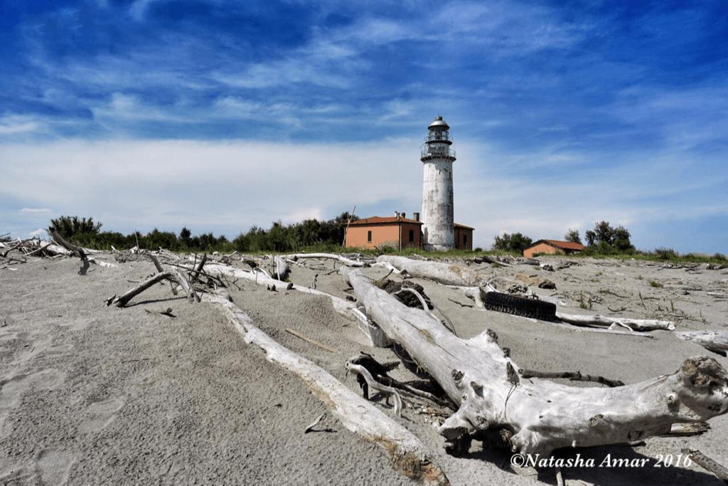 Isola dell'Amore, Po Delta Adventures Nature & Wildlife in Emilia Romagna