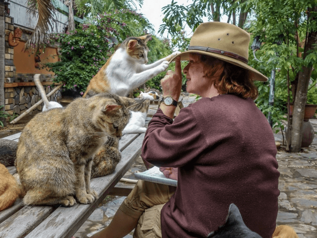 Hoi An Vietnam Cat Cafe