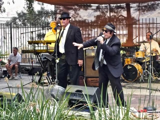 Jake and Elwood great singing shot at Idaho Botanical Gardens