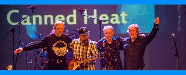 Canned Heat in concert