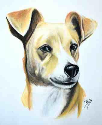 Victorias Dog
