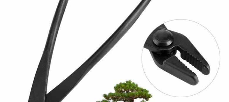Bonsai Jin Pliers