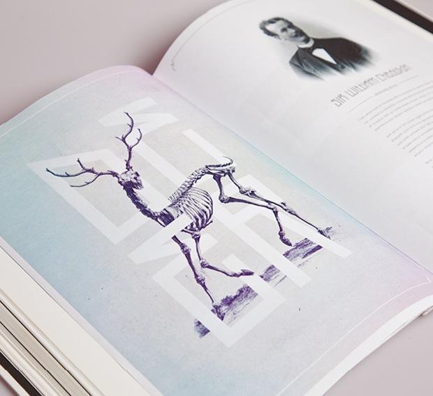 Bone: Anatomy illustration editorial spread
