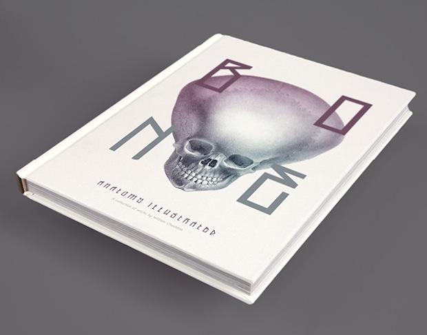 Bone: Anatomy illustration book cover