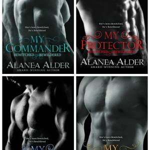 Bewitched and Bewildered Series by Alanea Alder Review