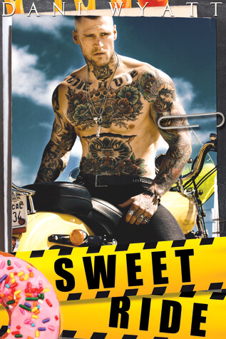 Sweet Ride by Dani Wyatt: Review